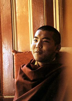 Yidams ~ 3rd Jamgon Kongtrul Rinpoche http://justdharma.com/s/b6p86 Are the many yidams we see in pictures and visualize real? No, they are symbols of the ultimate yidam. The various forms and attributes of the deities point to manifold habits of clinging, grasping, and holding impure appearances in one's mind. There are so many impure ideas and things one thinks are real. Each yidam symbolizes one of the many aspects of clinging and clutching. One needs to know this. [...] The deity's body…