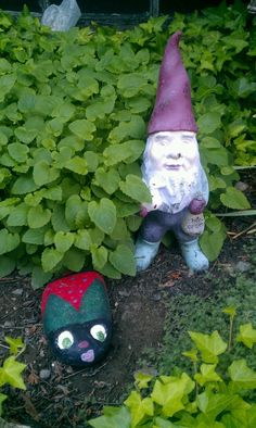 Gnome and Ladybug Rock
