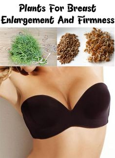 Many women tried different treatments for breast enlargement and firmness. Find out about some amazing Plants for Breast Enlargement and Firmness!