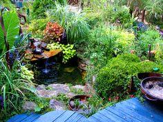 Lush yard landscaping.