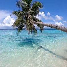 Destinations, Destination Voyage, Crystal Clear Water, Tropical Vibes, Beautiful Beaches, Underwater, Ocean, The Incredibles, Sky