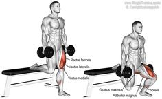 Dumbbell Bulgarian split squat. Targets your Quadriceps. Synergistic muscles are your Gluteus Maximus, Adductor Magnus, and Soleus. Also known as the single leg dumbbell split squat and the back foot elevated split squat.