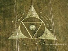 Crop Circle at Wessex Ridgeway, Nr Roundway, Wiltshire, UK. Reported 24th July 2013