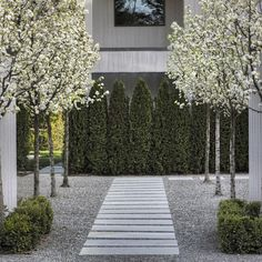 Landscape Design, Pictures, Remodel, Decor and Ideas - page 18