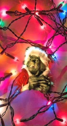 the grinch in his element : The Grinch, Grinch Stole Christmas, Cute Christmas Wallpaper, Holiday Wallpaper, Winter Wallpaper, Christmas Themes, Christmas Lights, Cute Patterns Wallpaper, Wallpaper Ideas
