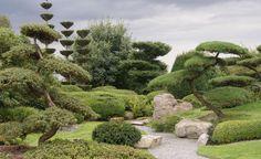 Gestaltungstipps für Japanische Gärten
