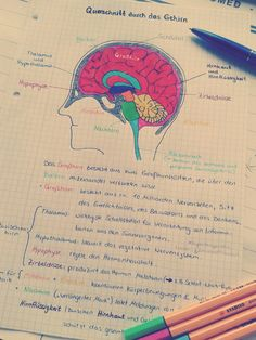 I don't know why but looking at pretty notes motivates me to study.