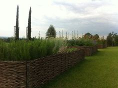 italy-garden-cypress-woven-raised-beds-gardenista