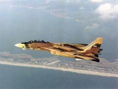 iranian F-14 Tomcat Tomcat F14, Birds In The Sky, F22, Top Gun, Jet Plane, Cold War, Iranian, Countries Of The World, Air Force
