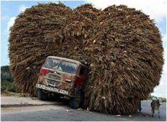 Alternative Ways to Transport