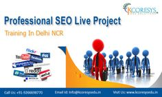 If you are really interested to advance your career in the SEO or web designing field, then it is a better idea to get seo training live project noida. There are many institutions in this vicinity that provide high-end training to the candidates enrolling with them.
