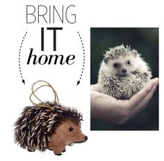 """Bring It Home: Hedgehog Ornament"" by polyvore-editorial ❤ liked on Polyvore featuring interior, interiors, interior design, home, home decor, interior decorating and bringithome"