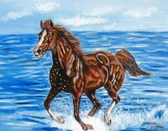 arabian horse paintings | ... Point / unavailable - by Elizabeth Fiedel from 1WC Motion art exhibit