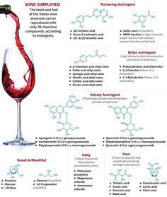 Understanding what is in wine.