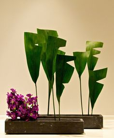 Modern Haran Ikebana...aspidistra  (cast iron) leaves