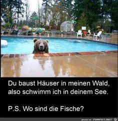 funpot: Du baust Haeuser in meinem See.jpg von Floh