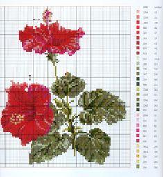 graficos-de-flores-bonitas-en-punto-de-cruz-9