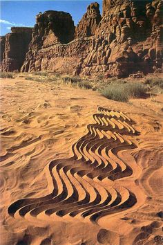 Andy Goldsworthy - I could go to the beach and on wet sand, sculpt the linear pattern of wood. Or, I could use another material which would make my study permanent such as plaster.