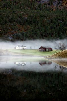 Out of the Mist | Content in a Cottage