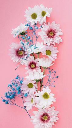 Wallpaper Pastel, Iphone Lockscreen Wallpaper, Flower Background Wallpaper, Sunflower Wallpaper, Cute Wallpaper Backgrounds, Pretty Wallpapers, Flower Backgrounds, Cellphone Wallpaper, Beautiful Landscape Wallpaper