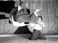 Even kneeling, aikido is still super effective