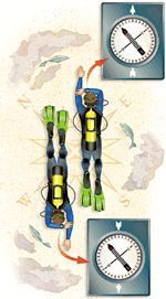 Most scuba divers struggle to master this vital navigational skill, take a crash course and learn how to use your underwater compass like a pro. Scuba Diving Quotes, Best Scuba Diving, Scuba Diving Gear, Cave Diving, Scuba Bcd, Scuba Diving Magazine, Scuba Watch, Compass Navigation, Diving Regulator