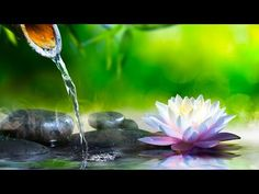 Magic Carpet Ride: a guided relaxation - YouTube