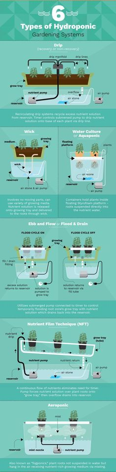 6 Different Hydroponic Gardening Systems For Growing Food. 6 Different Hydroponic Gardening System Hydroponic Gardening, Container Gardening, Organic Gardening, Gardening Tips, Aquaponics Greenhouse, Indoor Vegetable Gardening, Hydroponic Growing, Aquaponics Plants, Gardening Supplies