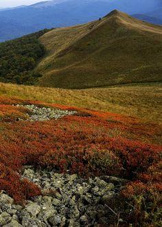 autumn in Podkarpackie, Bieszczady, Poland Tatra Mountains, Carpathian Mountains, The Beautiful Country, Beautiful World, Wonderful Places, Beautiful Places, Polish Mountains, Poland Travel, Central Europe