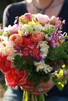 Flower Farm, My Flower, Flower Power, Cactus Flower, Flower Ideas, Flower Market, Flower Shops, Beautiful Flowers, Prettiest Flowers