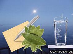 Una noche de Luna Llena, escribe en un papel tus deseos, después cubre el papel con hojas de laurel y coloca al lado, un vaso con agua. Deberás dejarlo a la luz de la luna toda la noche. Luego mira a la Luna y formúlale tus deseos.  A la mañana siguiente quema el papel con tus deseos junto con las hojas de laurel.  ¡Que se cumplan tus deseos!  ¡Suerte! https://www.cuarzotarot.es/la-luna/la-luna-llena #FelizSábado #FelizDía #SuerteLunaLlena