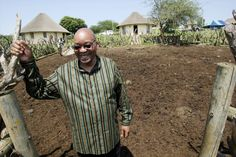 Zuma will make an profit on his Nkandla home after repaying the state File photo of then-deputy president Jacob Zuma at his homestead in Nkandla on December (Simphiwe Nkwali/Sunday Times/Gallo) Round House Plans, Jacob Zuma, Cattle Farming, Exhibition Stand Design, Cool Countries, South Africa, How To Become, Journey, House Design