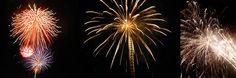 Fireworks photography tips (works for lightning too! Fireworks Photography, Photography Tips, Photographing Fireworks, Lightning, Flowers, Plants, Lightning Storms, Plant, Lighting