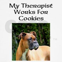 therapy dogs :-)