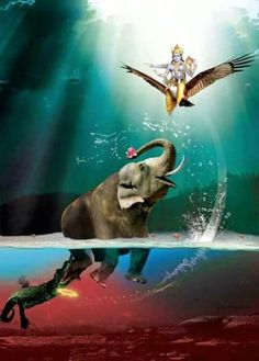 The prayer made by Gajendra on this occasion became a famous hymn in praise of… Lord Krishna Images, Radha Krishna Pictures, Krishna Radha, Hanuman, Shiva Art, Hindu Art, Lord Vishnu, Lord Ganesha, Shiva Linga