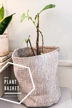 DIY Plant Basket Homemade Home Decor, Diy Home Decor, Decor Crafts, Diy Projects For Beginners, Fun Projects, Plant Basket, Diy Cushion, Diy Chicken Coop, Adult Crafts