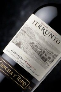 In memory of my dear running buddy, Dennis (miss you so much!), I highly recommend Chilean Concha y Toro wines - his personal favorite. I think all of their reds are worth trying, but the Terrunyo Carmenere is definitely on my list to check out! And, of course, I'll raise a glass to Dennis!