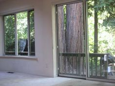 View out to redwoods and back deck