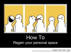 Funny pictures about Your personal space. Oh, and cool pics about Your personal space. Also, Your personal space photos. Funny Shit, Haha Funny, Funny Cute, Funny Stuff, Funny Things, Freaking Hilarious, Random Stuff, Funny Man, Stupid Things