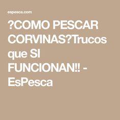 【COMO PESCAR CORVINAS】Trucos que SI FUNCIONAN!! - EsPesca