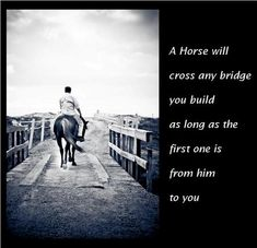 It's About The Horse :: cool pics with horse quotes