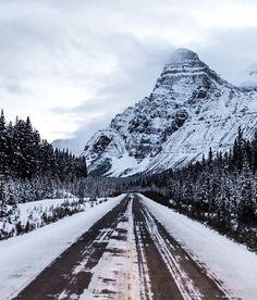 icefields parkway. mt chephren. banff. alberta. by Tanner Wendell Stewart #xemtvhay