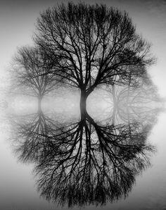 ES13- Ansel Adams - ethereal