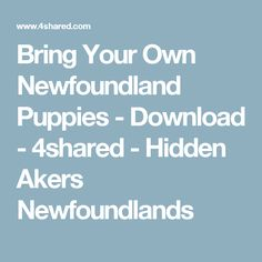 Bring Your Own Newfoundland Puppies - Download - 4shared - Hidden Akers Newfoundlands