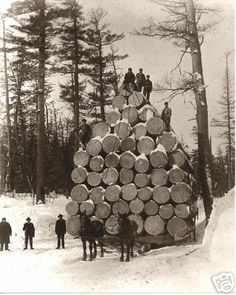 Imagine this as a big pile of Christmas trees!