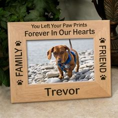 pet memorial poems