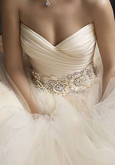 love the champagne/ivory color, top, minus the floral embellishments... wish i could see the bottom of the dress