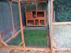 outdoor rabbit enclosure - Google Search