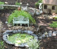 Pond with miniture water lettuce