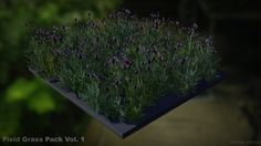 Field Grass Package Vol. 1 by Philipp Nasahl in props,On Sale - Marketplace Unreal Engine, Low Poly, Pretty Good, Packaging, Map, Grasses, Location Map, Wrapping, Maps